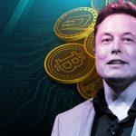 Elon Musk นักธุรกิจชื่อก้องโลก ที่ไม่ได้ชอบเป็น CEO เลยแม้แต่น้อย